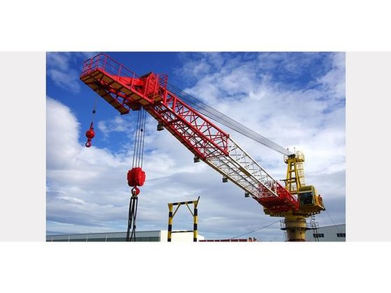 TSC MANUFACTURING Cranes - Offshore