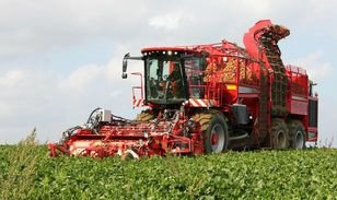 HOLMER T-3 beet harvester in