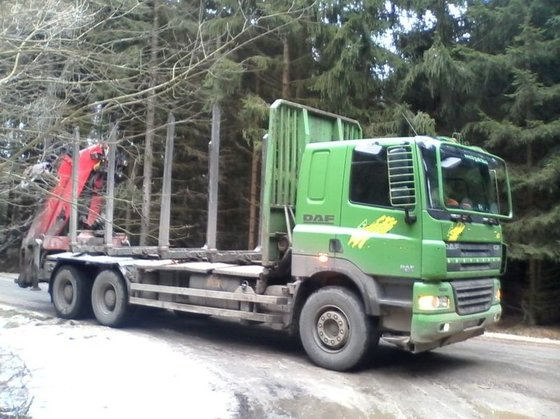 2007 DAF timber truck in
