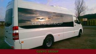2017 MERCEDES-BENZ Sprinter 516 20