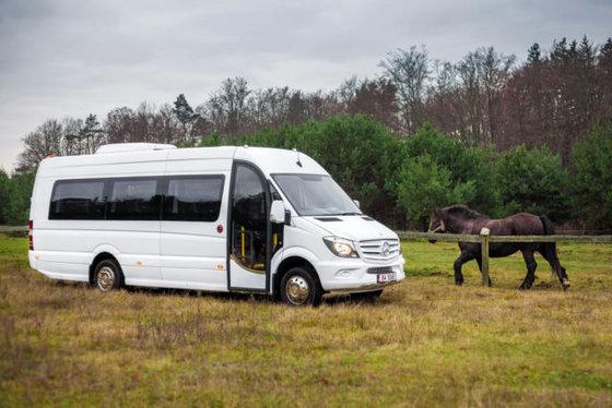 2015 MERCEDES-BENZ 516 Sprinter Touring