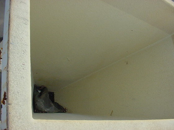 Steel Hopper 1481 in Painesville,