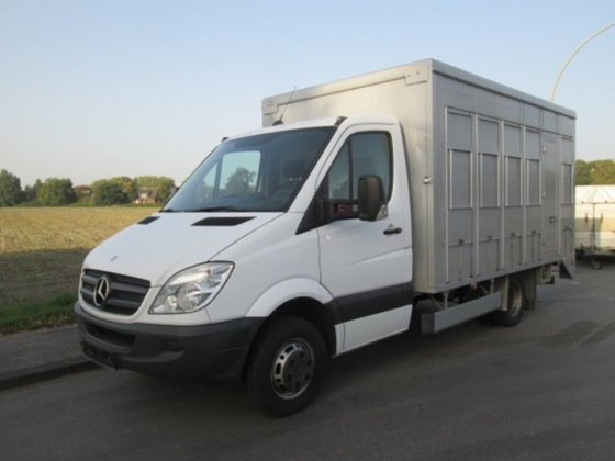 2010 mercedes benz viehtransporter sprinter 2 stock tr nke in stadtlohn deutschland. Black Bedroom Furniture Sets. Home Design Ideas