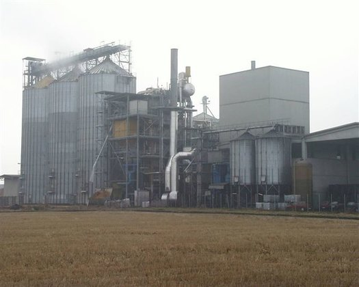 APPROXIMATELY 6.7MW BIOMASS COGENERATION PLANT
