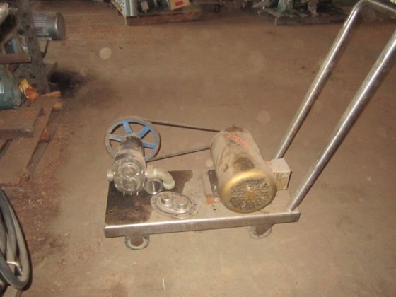 Pump, Positive, Displacement, Sani S/st,