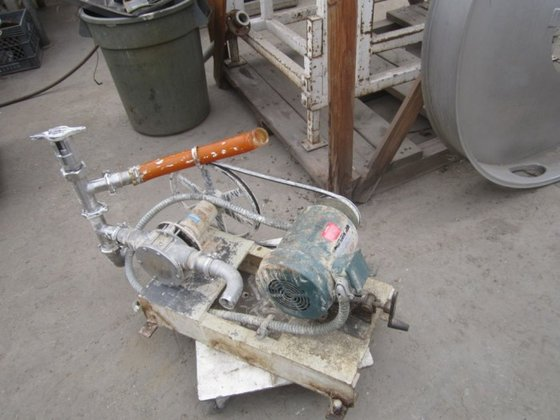 "1-1/2"" Pump, Positive, 316 S/st,"