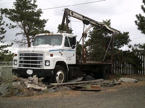 1981 INTERNATIONAL 2155 in Tri-Cities,