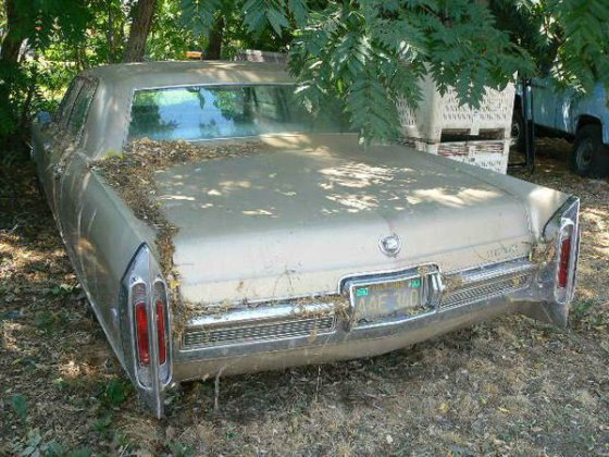 1966 Cadillac FLEETWOOD in Cedarville,
