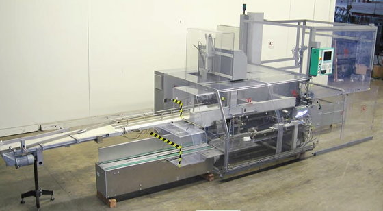 Marchesini Case Packer Palletizer Case