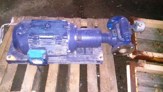 "Viking Pump 2.5"" GEAR S/S,"