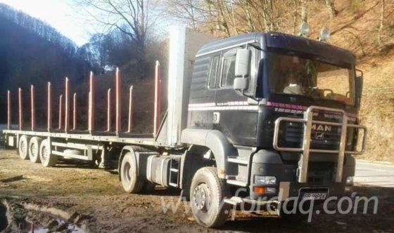 2004 MAN Longlog Truck Romania