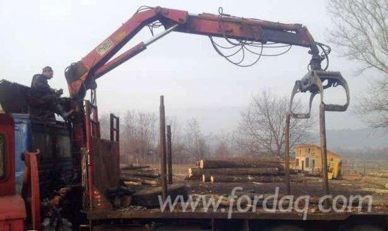 Hiab Harvester Crane Romania in