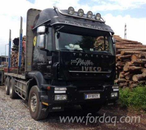 Longlog Truck Romania in Baia