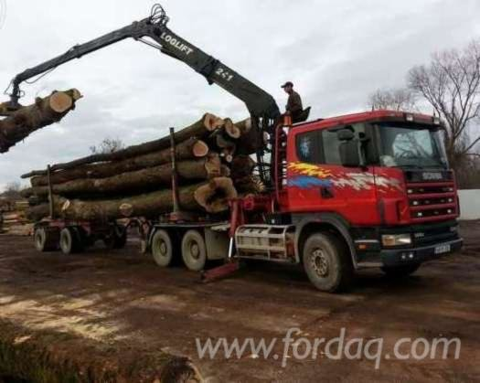 2000 scania Longlog Truck Romania