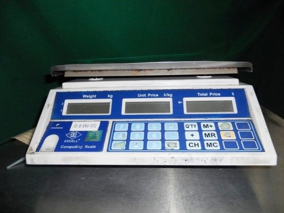 EXCELL MODEL GR30 SCALE -