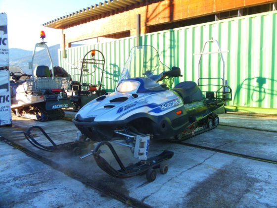 2002 Arctic Cat Bearcat 660