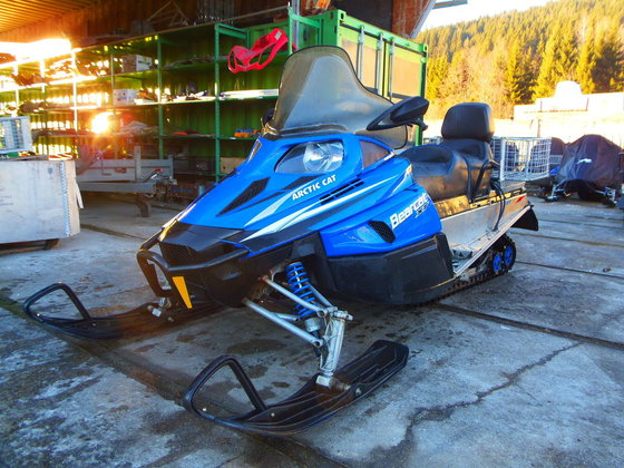 2010 Arctic Cat Bearcat Z1