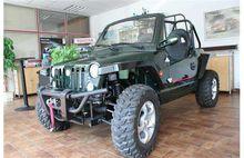 2014 Quadix Buggy 800