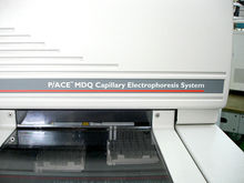Beckman Coulter Capillary Elect