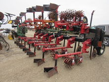 Lilliston 12R36 Row Crop Cultiv