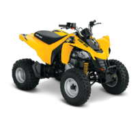 New Can-am DS 250 Yo