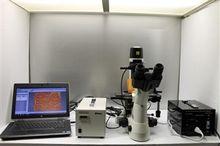 Nikon TS100-F Eclipse Microscop