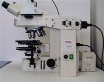 ZEISS Axioplan 2 Microscope wit