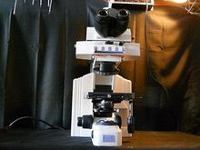 Nikon Eclipse E600 Microscope w
