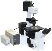 Olympus IX50 Microscope w/Phase
