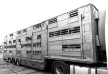 2009 PEZZAIOLI SBA31 livestock