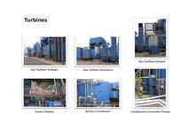 220 MW Cogeneration Power Plant