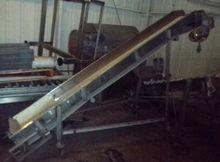 """Conveyor, Belt, 15"""" X 10', S/st"""
