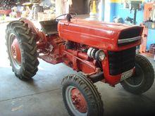 Used MF MF135 '66 in