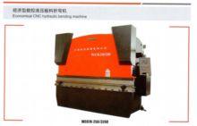 137 Ton, YANGLI, #WC67K-125x320