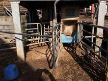 Stockbreeding equipment - : DAC