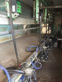 Milking parlour / Automatic mil