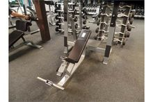 Precor Incline Barbell Bench