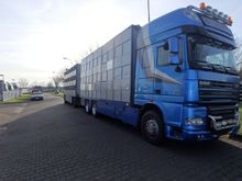 2008 DAF XF105.460 + Animal tra