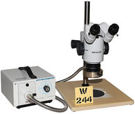 Wild M8 StereoZoom Microscope w