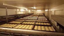 Digester, A fermentation room