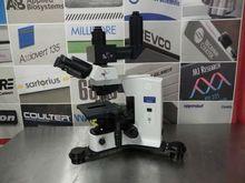 Olympus BX41 Compound Microscop