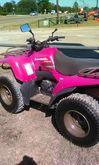2006 Kawasaki Prairie� 360