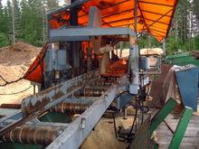 Saw line, Logging plants