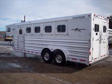 2014 Platinum 5 HORSE