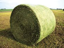 Used Fine Twine in A