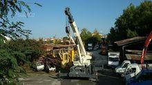 Terrain crane BENDINI