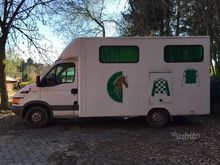 Van Iveco horse transport