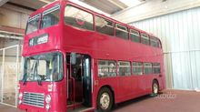 Bus Bus English Special