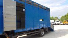 Cash cattle transport 2006 in a