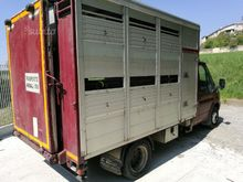 Ford transit transport livestoc